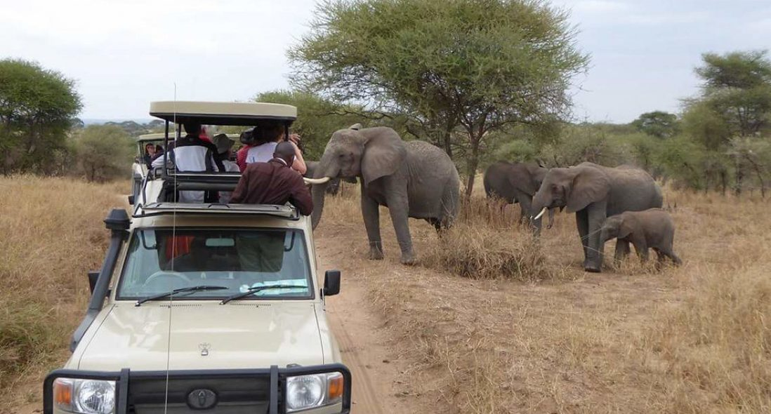 Top 5 Reasons to Visit Arusha