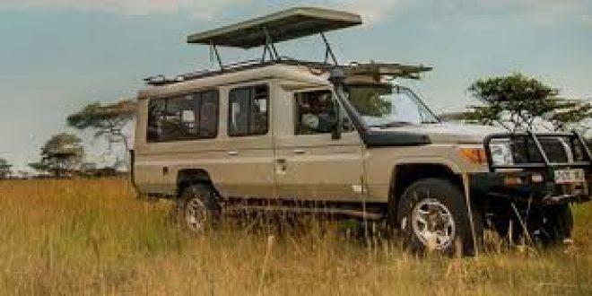 safari planning guidelines
